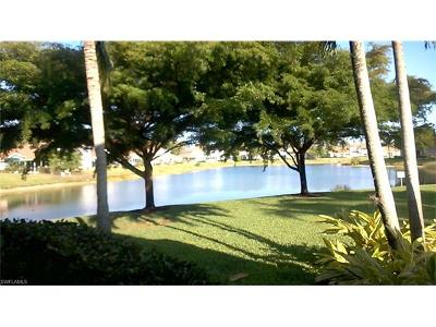 Naples FL Condo/Townhouse For Sale: $230,000