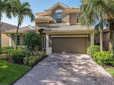 Estero Single Family Home For Sale: 9335 Oak Strand Dr
