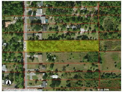 Collier County Residential Lots & Land For Sale: 694 16th St SE