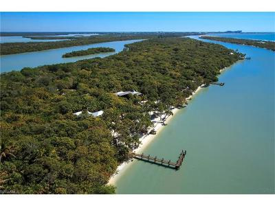 Naples Single Family Home For Sale: 11781 Little Marco Island