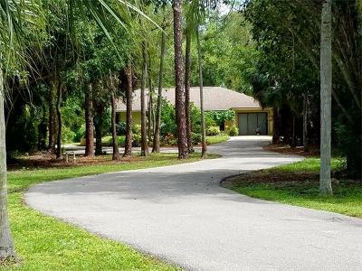 Collier County Single Family Home For Sale: 3561 29th Ave SW