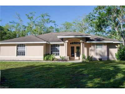 Naples Single Family Home For Sale: 191 20th St NE