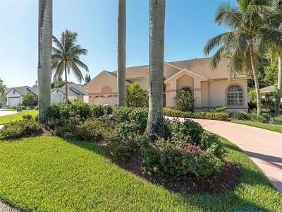 Single Family Home For Sale: 199 Palmetto Dunes Cir