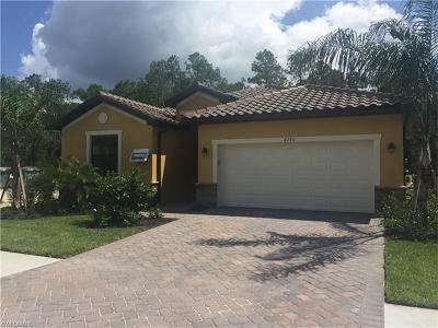 Naples Single Family Home For Sale: 4240 Raffia Palm Cir
