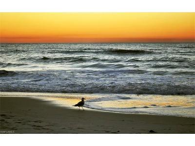 Naples Condo/Townhouse For Sale: 377 Vanderbilt Beach Rd #303