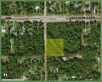 Naples Residential Lots & Land For Sale: Xxxx 29th St SW