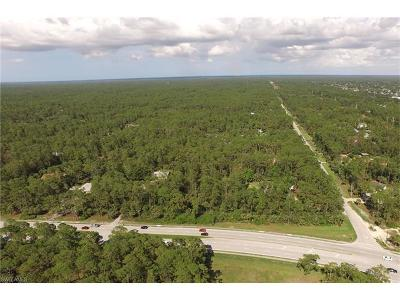 Naples Residential Lots & Land For Sale: 1340 Logan Blvd S