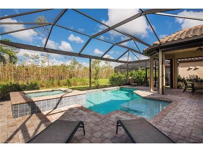 Naples Single Family Home For Sale: 8857 Vaccaro Ct