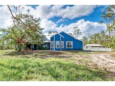 Estero Single Family Home For Sale: 21071 Six Ls Farm Rd