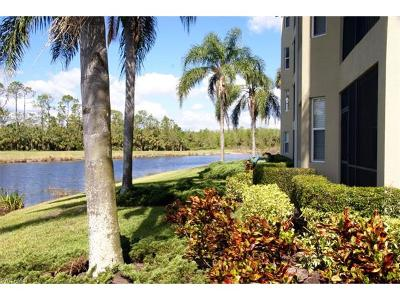 Condo/Townhouse For Sale: 10317 Heritage Bay Blvd #1412