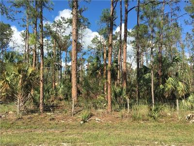 Naples Residential Lots & Land For Sale: Everglades Blvd S