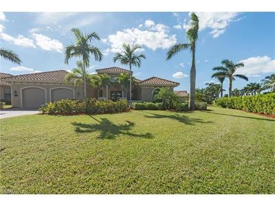 Single Family Home For Sale: 990 Tivoli Dr