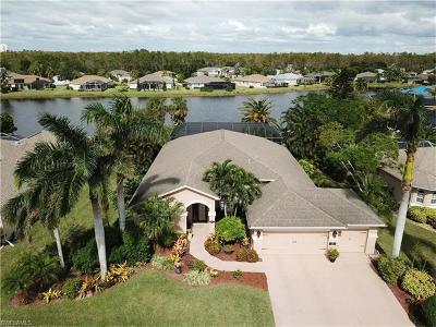 Estero Single Family Home For Sale: 4124 Olde Meadowbrook Ln
