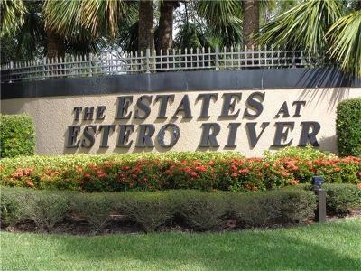Estero Single Family Home For Sale: 9167 Estero River Cir
