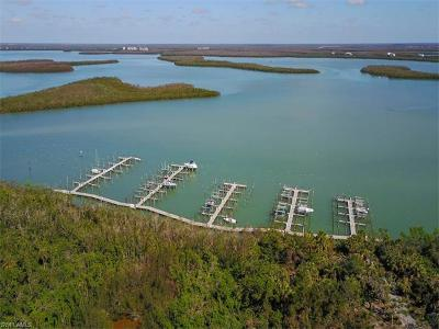 Marco Island Residential Lots & Land For Sale: 1255 Blue Hill Creek Dr