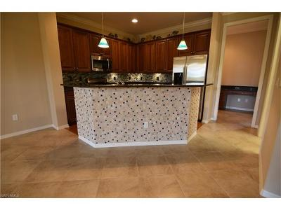 Naples FL Condo/Townhouse For Sale: $313,250