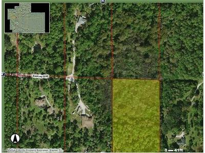 Naples Residential Lots & Land For Sale: Kearney Ave