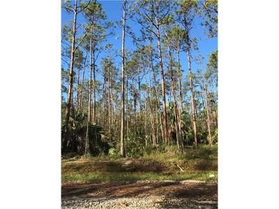Collier County Residential Lots & Land For Sale: Desoto Blvd S