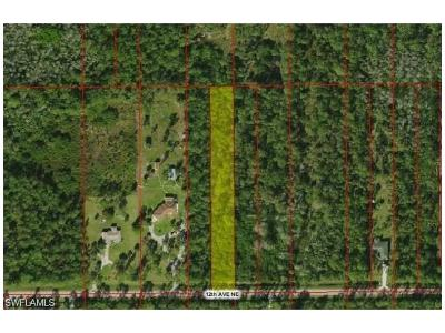 Collier County Residential Lots & Land For Sale: 12th Ave NE