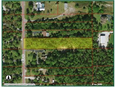 Naples FL Residential Lots & Land For Sale: $99,999