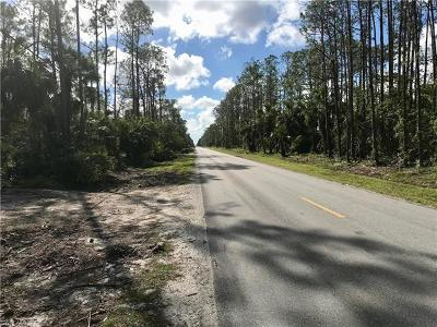 Collier County Residential Lots & Land For Sale: Desoto Blvd