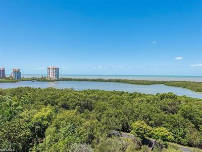 Naples Condo/Townhouse For Sale: 5550 Heron Point Dr #802