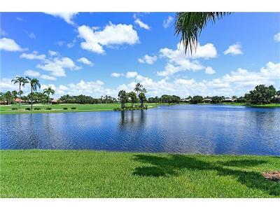 Naples Single Family Home For Sale: 487 Palo Verde Dr