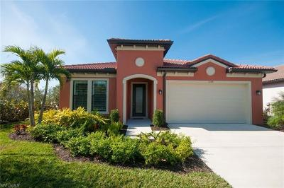 Collier County, Lee County Single Family Home For Sale: 1359 Petone Ct
