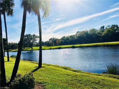 Naples Condo/Townhouse For Sale: 110 Wilderness Dr #G-128