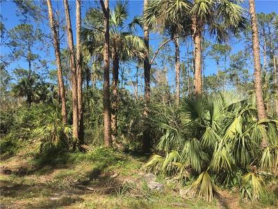 Naples Residential Lots & Land For Sale: 3341 6th Ave SE