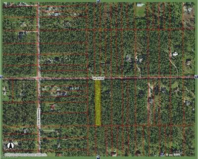 Collier County Residential Lots & Land For Sale: 6th Ave SE