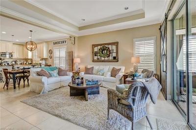 Canopy Single Family Home For Sale: 3676 Canopy Cir