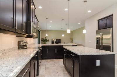 Bonita Springs Single Family Home For Sale: 11159 St Roman Way