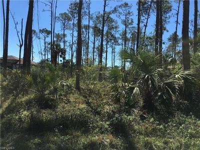 Collier County Residential Lots & Land For Sale: 16th Ave SE
