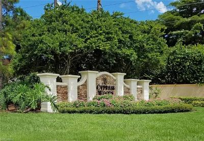 Naples Condo/Townhouse For Sale: 3445 Grand Cypress Dr #102