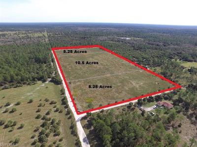 Naples Residential Lots & Land For Sale: 1180 Keane Ave