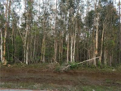 Bonita Springs Residential Lots & Land For Sale: 24311 Roger Dodger St