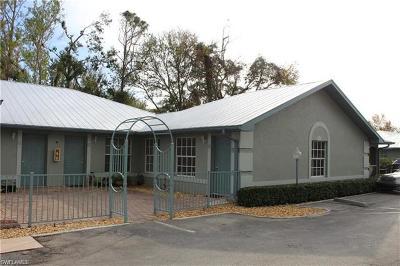 Naples FL Condo/Townhouse For Sale: $169,900