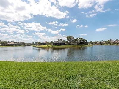 Naples Single Family Home For Sale: 466 Palo Verde Dr