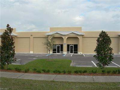 Naples Commercial Pending With Contingencies: 3899 Mannix Dr #422