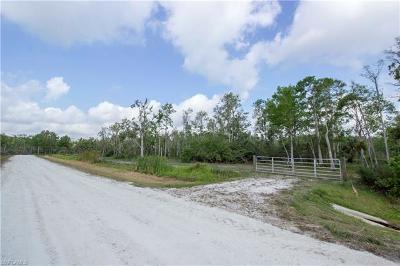 Naples Residential Lots & Land For Sale: Wilson Blvd N