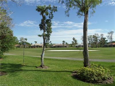 Naples FL Condo/Townhouse For Sale: $285,000