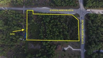 Naples Commercial Lots & Land For Sale