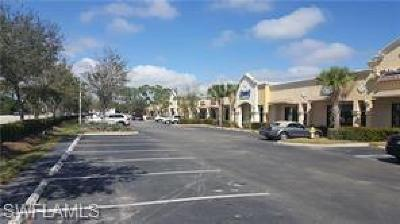 Bonita Springs Commercial For Sale: 26455 Old 41 Rd #13A