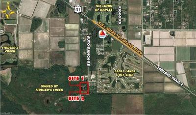 Naples Residential Lots & Land For Sale: 1051 Auto Ranch Rd