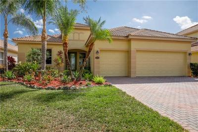 Estero Single Family Home Pending With Contingencies: 21131 Palese Dr