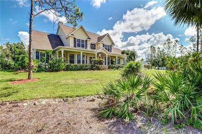 Bonita Springs Single Family Home For Sale: 10341 Morningside Ln