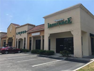 Naples Commercial For Sale: 4735 Santa Barbara Blvd #800