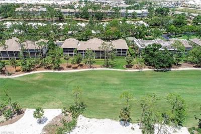 Naples Condo/Townhouse For Sale: 770 Eagle Creek Dr #101