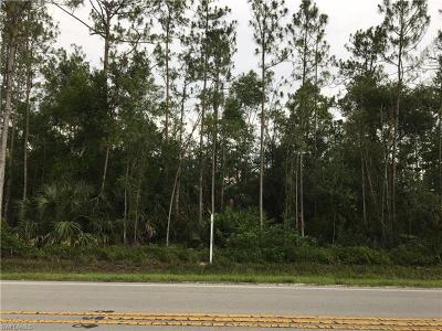 Collier County Residential Lots & Land For Sale: Golden Gate Blvd